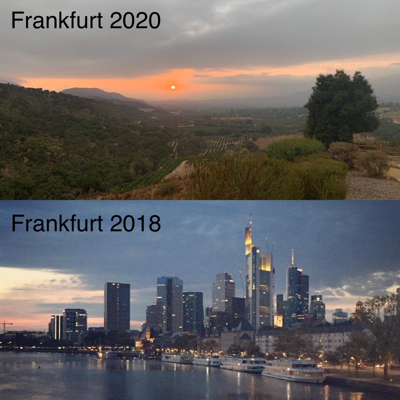 virtual Frankfurt Book Fair